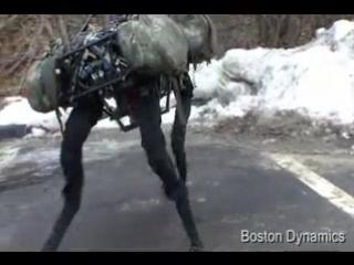 military cyber-dog