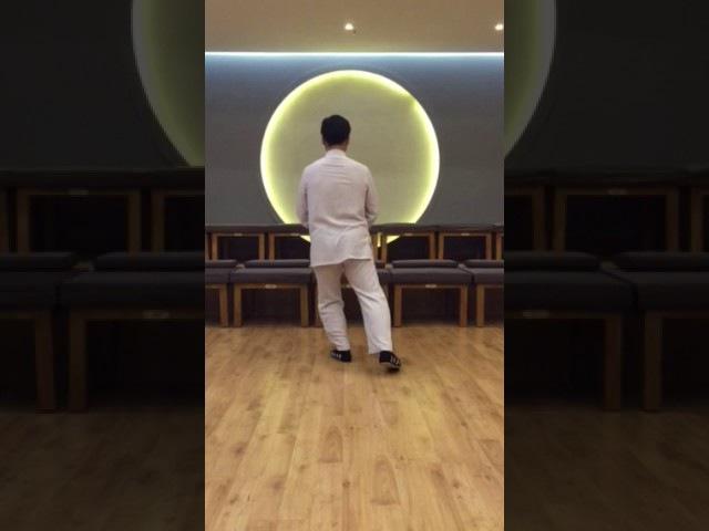 10 shi - hou tui shi в исполнении Мастера Ван Лина