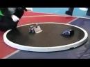 Robots fight Nani (JoJo's Dank Meme) · coub, коуб