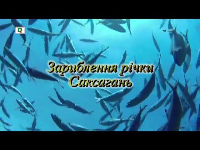 Зариблення річки Саксагань