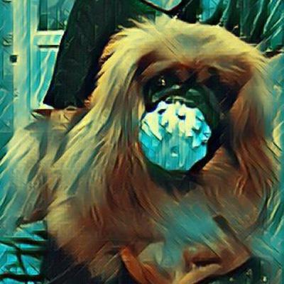 Ghostemane Mercury Roblox Id Bypassed Download Mp3 Ghostemane