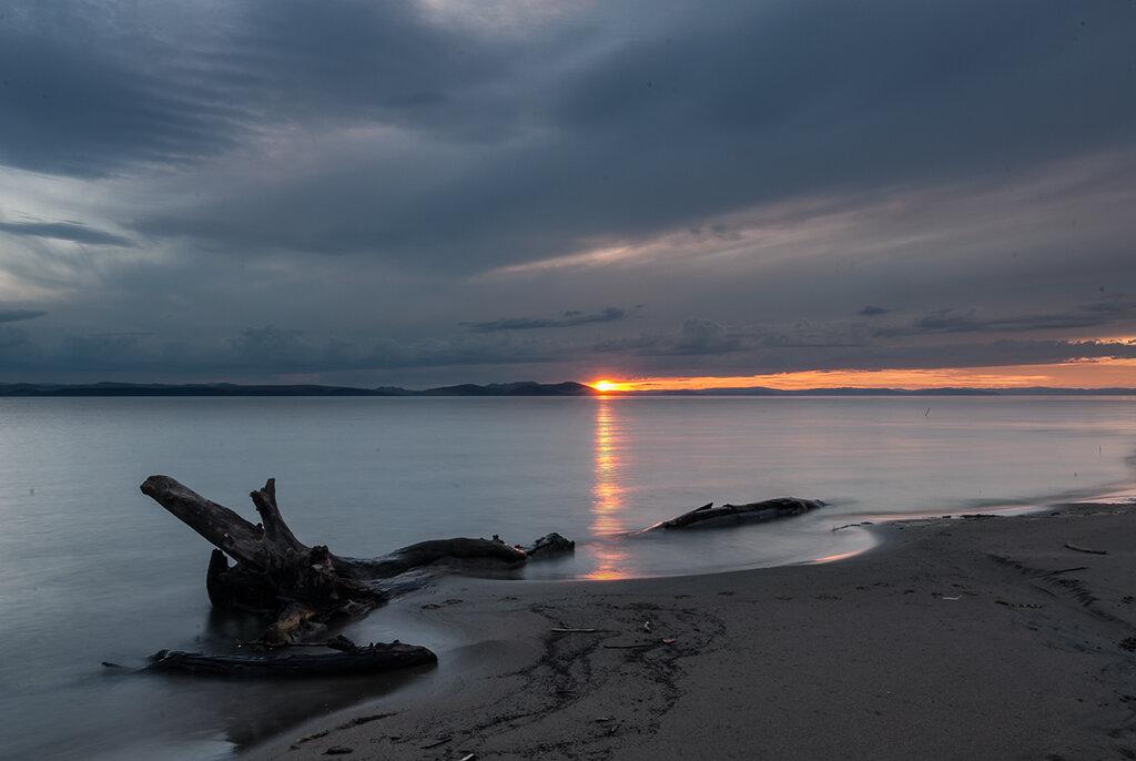 грибного фото лебяжье красноярское море выбор
