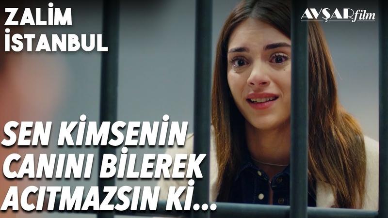 Cemre Nedim'e Geldi, Sana İnanıyorum - Zalim İstanbul 28. Bölüm