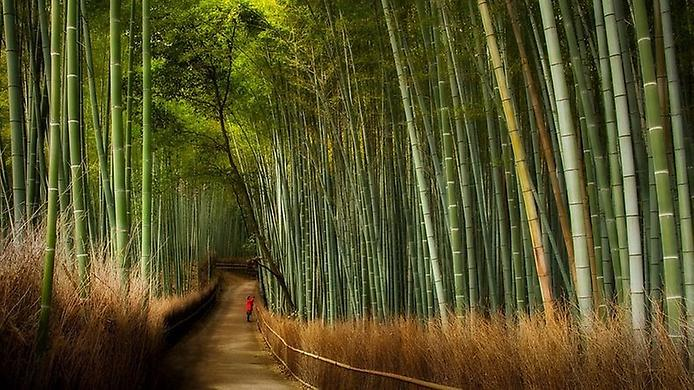 Самые красивые тропы мира