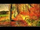 VIDEO-2019-09-03-11-17-
