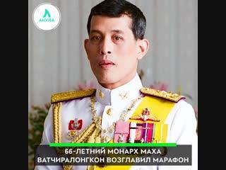 Король Таиланда возглавил веломарафон | АКУЛА