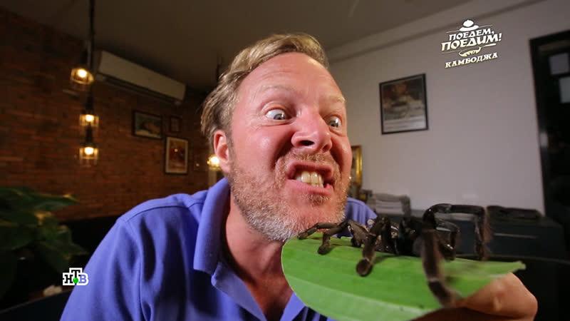 Вкусные жуки, пауки и змеи