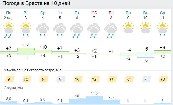 До +12°С, но с дождями. Все о погоде в Бресте на этой неделе