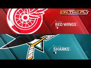 Red Wings - Sharks 11/16/19