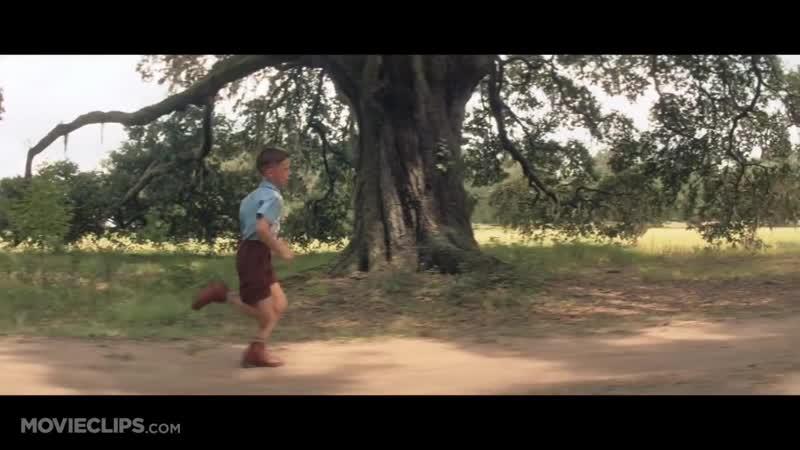 Run Forrest Run Forrest Gump 2 9 Movie CLIP 1994