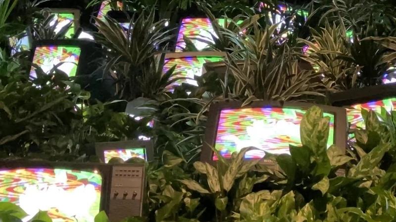Nam June Paik TV Garden