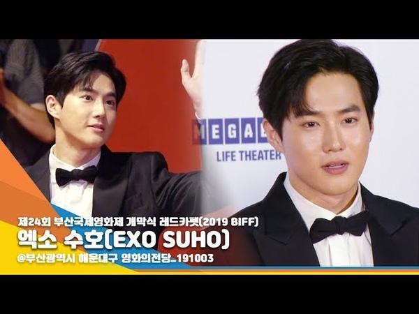 엑소 수호(EXO SUHO), 부산은 준면이의 잘생김에 취해~ (2019 부산국제영화제) [NewsenTV]