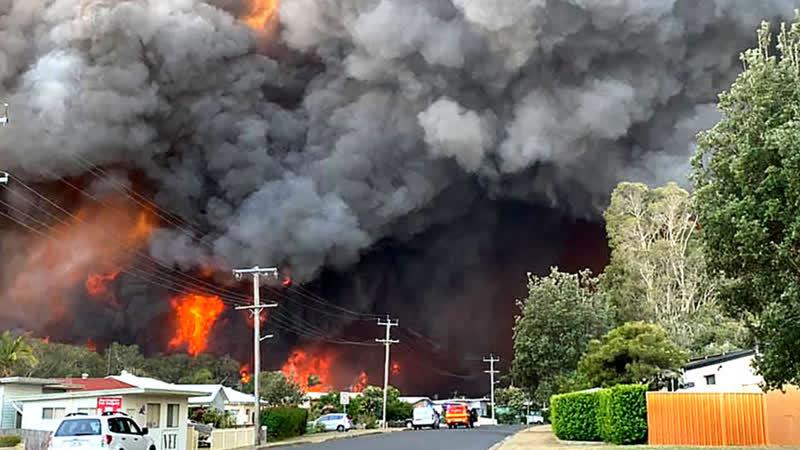 На борьбу с пожарами в Австралии собирают деньги даже порноактрисы