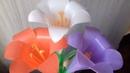 Hương dẫn làm hoa loa kèn từ ống hút | Flower from drinhking straws