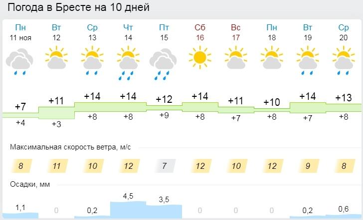 Ночные заморозки ожидаются в Беларуси 12 ноября