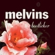 Melvins - Let It All Be