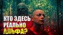 Ходячие мертвецы 10 сезон 2 серия КТО ЗДЕСЬ РЕАЛЬНО АЛЬФА Обзор серии