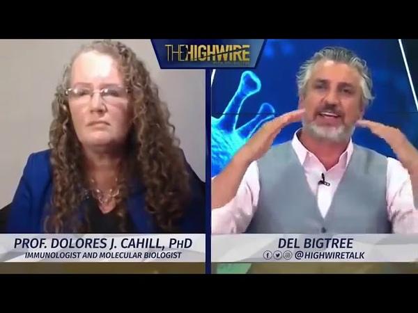 Entrevista a Dolores Cahill en The Highwire NO HAY NECESIDAD DE MASCARILLAS NI DISTANCIAMIENTO