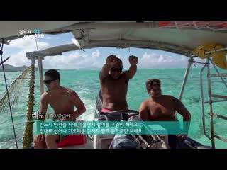 【k】tahiti travel-borabora island _snorkeling_sea color_blacktip shark_ray fish