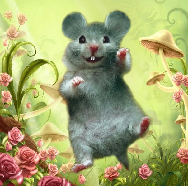 Мышка сказочные картинки