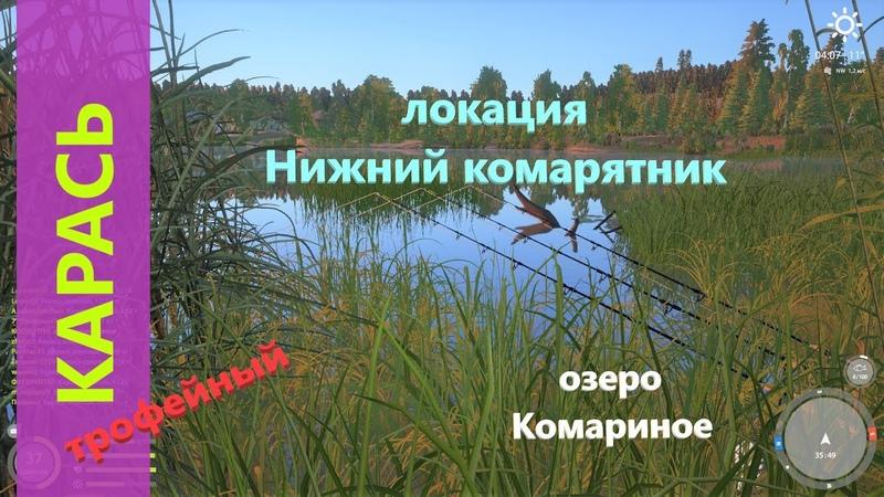 Русская рыбалка 4 озеро Комариное Трофейный карась на жмых