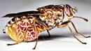 Летающие насекомые убийцы Документальный фильм