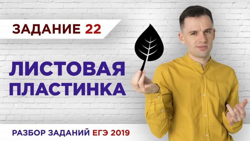 Листовая пластинка Разбор заданий ЕГЭ 2019