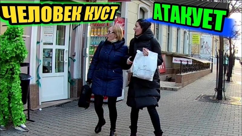 ЧЕЛОВЕК КУСТ АТАКУЕТ ПРАНК )