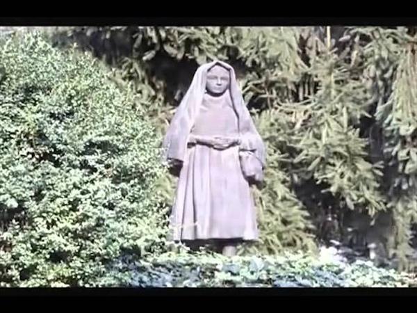 Quand La Vierge Marie revient sur terre pour nous…