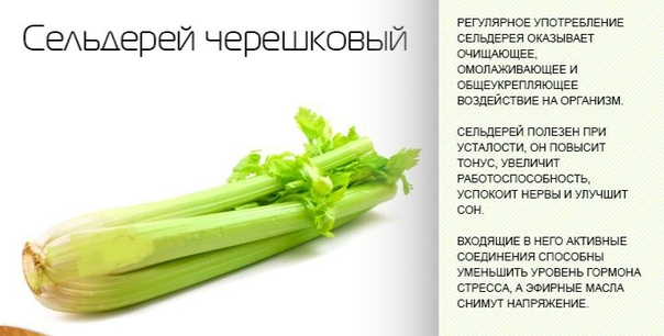 Сельдерей Черешковый Рецепты Для Похудения. Как применяют сельдерей для похудения, сколько есть и в каком виде — простые рецепты