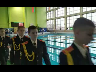 Swim meet polar bear