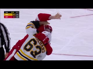 Brad marchand, filip hronek drop the gloves after hit behind the net