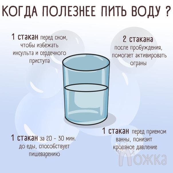 Что Пить Перед Едой Чтобы Похудеть. Что пить для похудения - рецепты приготовления напитков в домашних условиях