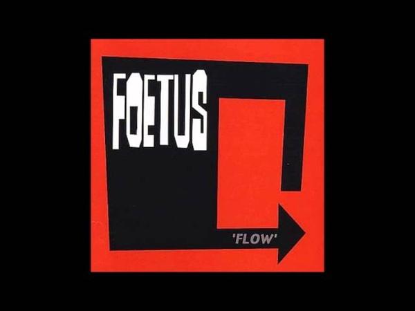 Foetus Quick Fix