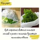 Сохранить свежесть салатных листьев и зелени