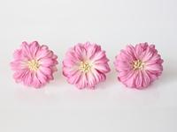 Герберы большие - розовый+белый 28 р - 1 шт.  Объемные герберы  диаметр ок. 5-6 см высота ок. 1 см длина стебля ок. 8 см