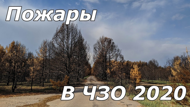 Пожары в Чернобыле сгоревшие села. Причины, последствия и выводы