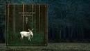 Osi And The Jupiter — Nordlige Rúnaskog [Full Album]