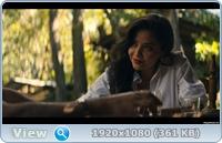 Нарко: Мексика (2 сезон: 1-10  серия из 10) / Narcos: Mexico / 2020 / WEB-DLRip + WEB-DL (720p) + (1080p)