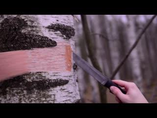 Нож Грибник-5 обзор