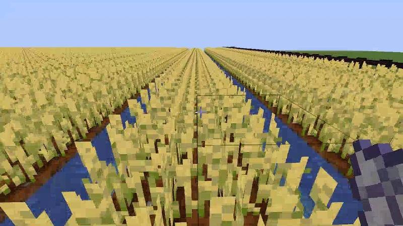 Сделал поле 100x100 в Minecraft побил мировой рекорд