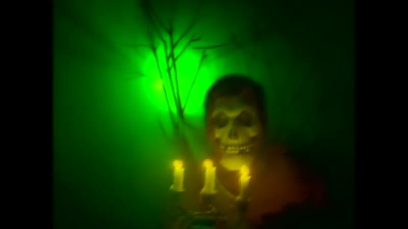 Misfits - Dig Up Her Bones (Official Video)