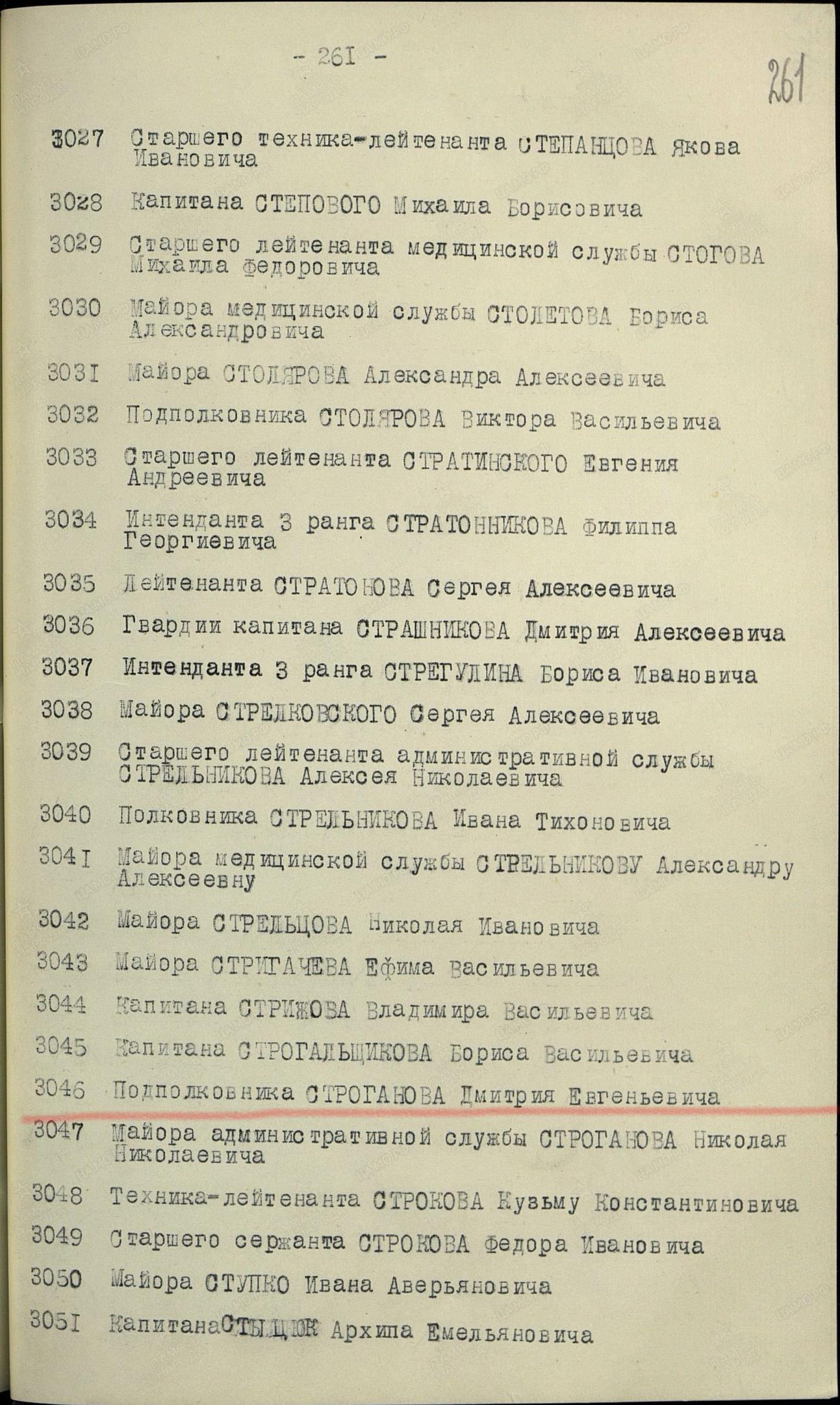 Герой Советского Союза Строганов Д.Е., изображение №5
