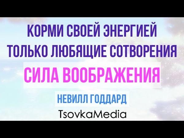 Корми Своей Энергией только Любящие Сотворения СИЛА ВООБРАЖЕНИЯ ~ Невилл Годдард TsovkaMedia