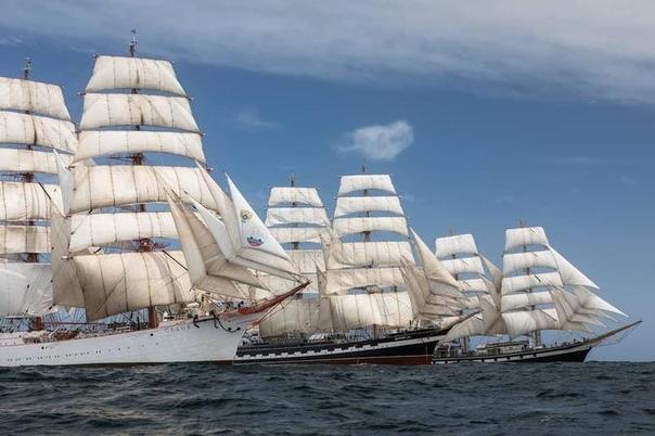 Парусники «Крузенштерн», «Седов» и «Паллада» во время гонки в честь 200-летия открытия Антарктиды