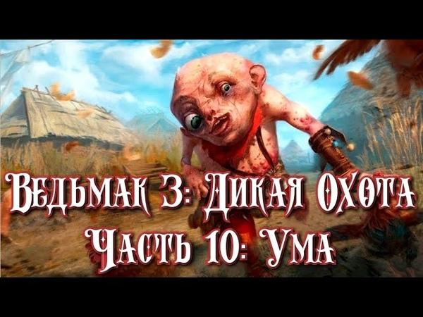 Ведьмак 3: Дикая Охота. Часть 10: Ума