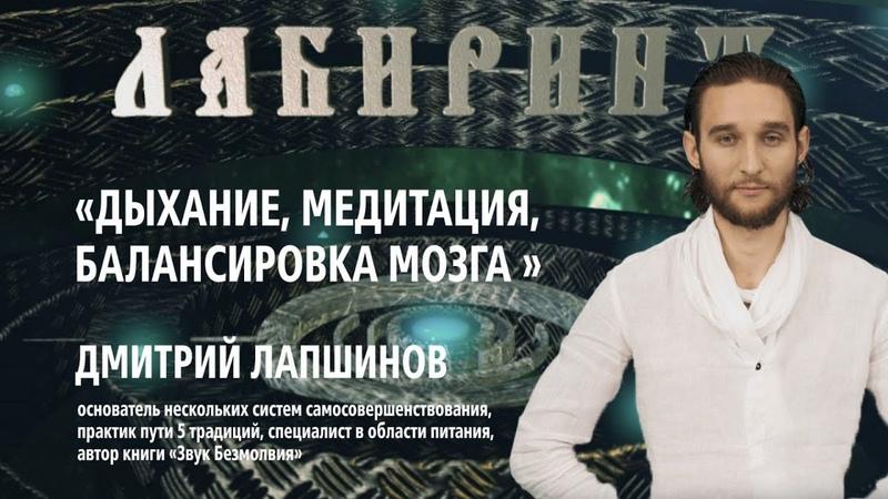 ЛАБИРИНТ Дыхание медитация балансировка мозга Дмитрий Лапшинов