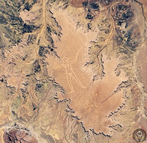 Гигантский человек на австралийском плато