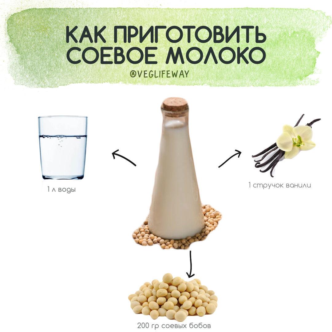 Готовим растительное молоко