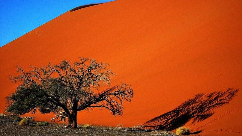 10 мест, где вы почувствуете грандиозность природы, изображение №10